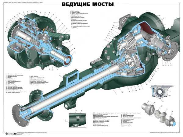 агрегат автомобиля, служащий его опорой и передающий усилие от двигателя к ведущим колёсам.  Состоит, как правило, из...