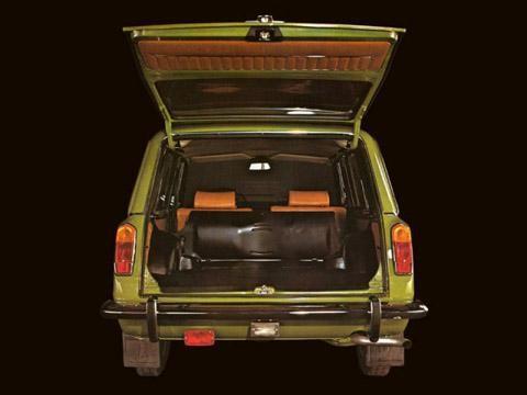 Салатовый ВАЗ 2102 вид сзади, багажник