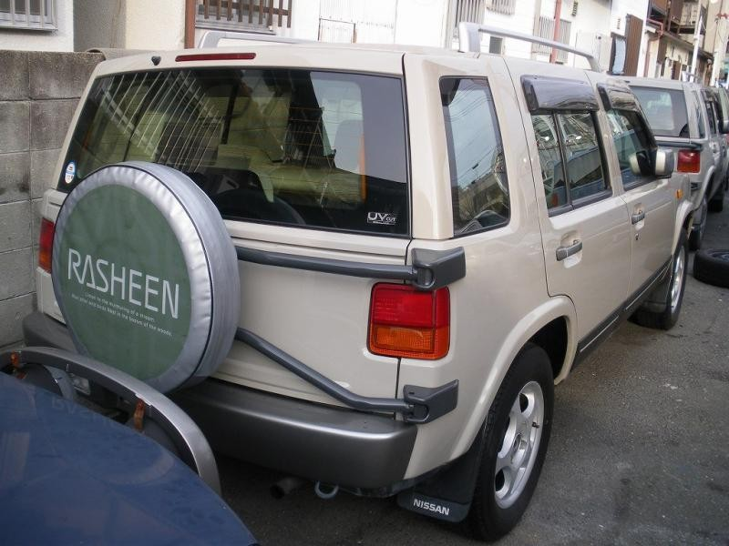 Серебристый Nissan Rasheen вид сзади