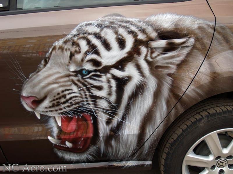 Белый тигр на Volkswagen Polo