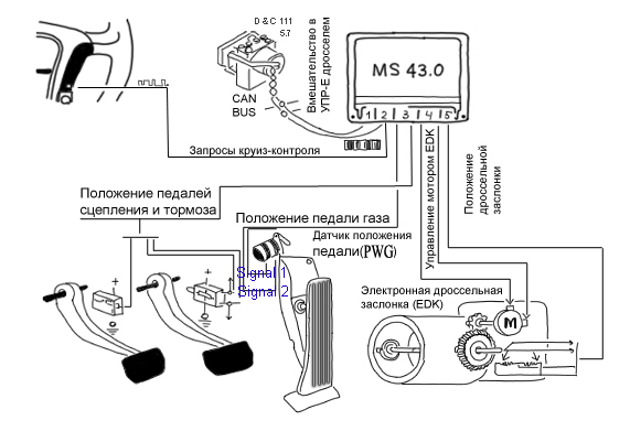 Electronic Actuation System