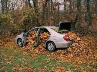 Пятёрка неприятностей для автомобиля, которые несёт опавшая листва